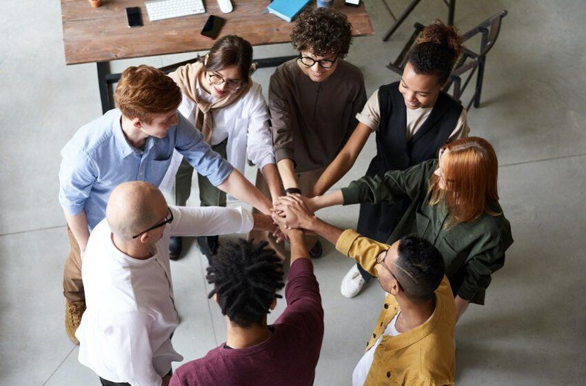 Professional HR management for Startups