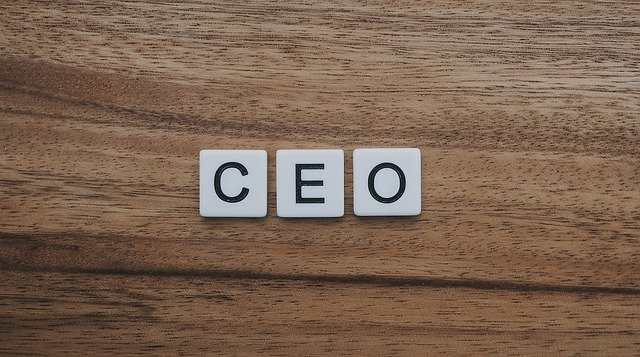 Step by Step Guide to be a Great Startup CEO